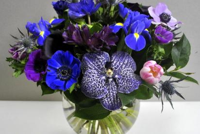 артукет, Нижний Новгород, цветы, купить, анемоны, орхидея ванда, ириcы, тюльпаны, cиний.